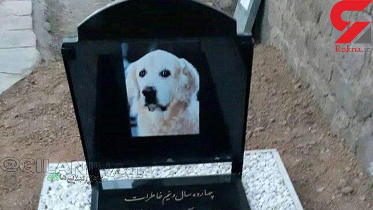 سنگ قبر سگ