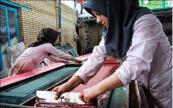 زنان کارآفرین مازندران در حصار سخت بی اعتمادی