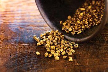 طلا در منگنه مقوامتی دلار قوی و حمایتی بازار سهام رشد محدودی کرد
