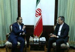 سخنگوی انصارالله یمن با جابری انصاری دیدار کرد
