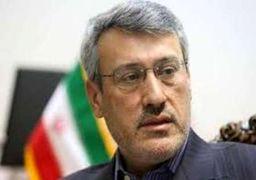 بعیدینژاد: باید از روزنامه گاردین تقدیر شود