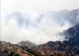 یک فروند پهپاد با نقض حریم هوایی لبنان در جنوب این کشور مواد آتش زا پرتاب کرد