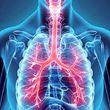 ۲۰ عادتی که به ریههایتان آسیب میزند