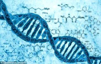 اطلاعات شخصی شهروندان بر اساس DNA ثبت میشود