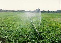 پیشبینی ۳۳۰۰ میلیارد تومان برای توسعه آبیاری نوین