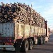 جاسازی عجیب چوب های قاچاق در اتوبوس +ببینید
