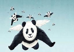 آیا ستاره چین در آسمان اقتصاد افول میکند؟