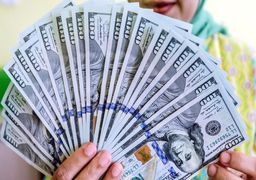 قیمت دلار امروز چهارشنبه 17 /02/ 99 | دلار در بازار تهران 130 تومان افزایش یافت