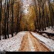 بارش ۵ روزه برف و باران در برخی استان ها/ ۲ سامانه بارشی در راه است