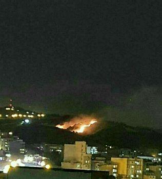 جنگل شیان در شمال شرق تهران دچار آتش سوزی شد؟