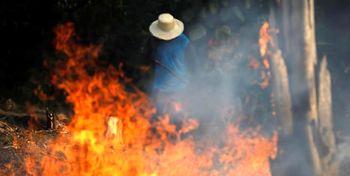حریق جنگل های آمازون از «فضا» قابل مشاهده است+ عکس