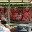چشمانداز بازار سهام در سال ۹۷