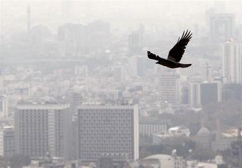 با یک میلیارد تومان در کدام مناطق تهران می توانیم خانه بخریم؟ + جدول