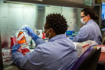 یافتههای امیدوارکننده تحقیقات پزشکی در ارتباط با شیوع کرونا