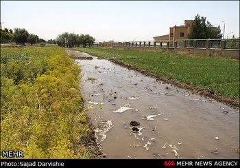 آبیاری 2 هزار هکتار مزارع با فاضلاب