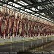 جزئیات ۴ پارامتر اصلی اخلال در بازار گوشت