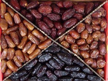 عرضه دولتی 15 هزار تن خرما در ماه رمضان