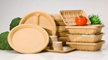 ظرف یکبار مصرف گیاهی را برای غذای گرم استفاه کنید