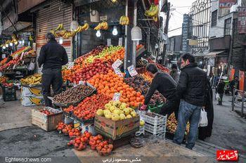رصد قیمتی بازار میوه به روایت رئیس اتحادیه میوه و سبزیفروشان