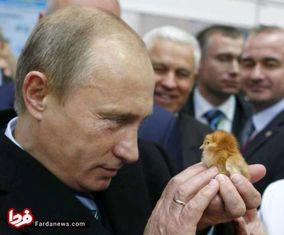تصاویری از پوتین که تا کنون ندیده اید!
