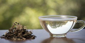 چای کیسه ای این سم را در بدن تولید می کند