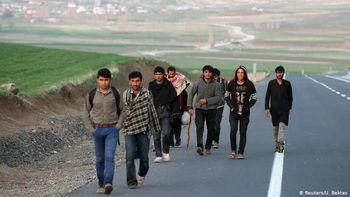 ماجرای اجساد کشف شده در مرز ایران و ترکیه