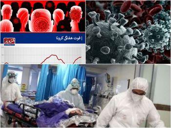 آمار واقعی فوتی های تهران از زبان استاندار