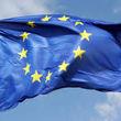 واکنش اتحادیه اروپا به ترور دانشمند ایرانی