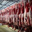 گوشت قرمز در سرازیری قیمت