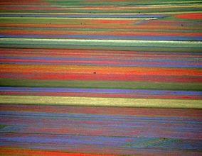تصاویر| جادوی حیرتانگیز رنگها در طبیعتِ بِکرِ ایتالیا؛ دهکده «کاستِلوچو»