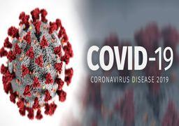سازمان جهانی بهداشت شیوع کروناویروس را
