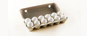 قیمت مرغ و تخم مرغ در ماه رمضان افزایش پیدا نمی کند