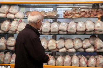 مرغ ۱۵ هزار تومانی در راه است