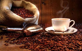 افزایش تقاضای جهانی قهوه