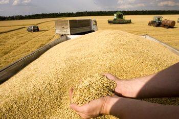 سیلوهای گندم در اواخر دولت دهم خالی بود + سند