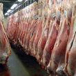 واردات گوشت برای تنظیم بازار افزایش مییابد