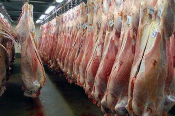 دلیل گرانی گوشت قرمز چیست؟ / چه خبر از بازار مرغ؟