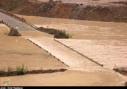 میزان خسارت سیل به بخش کشاورزی ۱۲ استان اعلام شد+ جدول