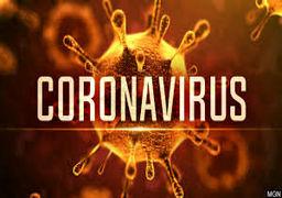 راز مصونیت قاره آفریقا از ویروس کرونا چیست؟
