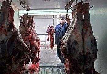 عرضه فوق العاده گوشت وارداتی در 158 نقطه تهران