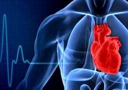 خوراکی های مفید برای سلامت قلب