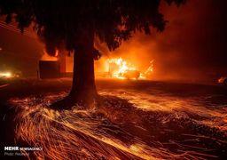 آتشسوزی در جنگل شمالی کالیفرنیا و نابودی شهر پردایس