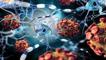 کشف استراتژی ویروس کرونا برای حمله به بدن