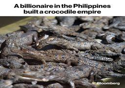 سرمایهگذاری عجیب میلیاردر فیلیپینی روی پرورش تمساح