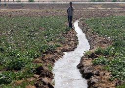 در آمریکا چند زمیندار بزرگ وجود دارد؟چنددرصد زمینهای زراعی اروپا اجارهای است؟راهکار کارآمدسازی کشاورزی ایران
