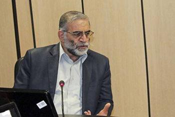 پسلرزه های ترور دانشمند ایرانی، شهید فخری زاده در رسانه های خارجی