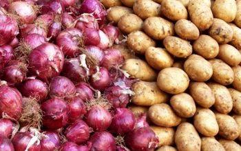 چرا پیاز، سیب زمینی و گوجه فرنگی گران شد؟