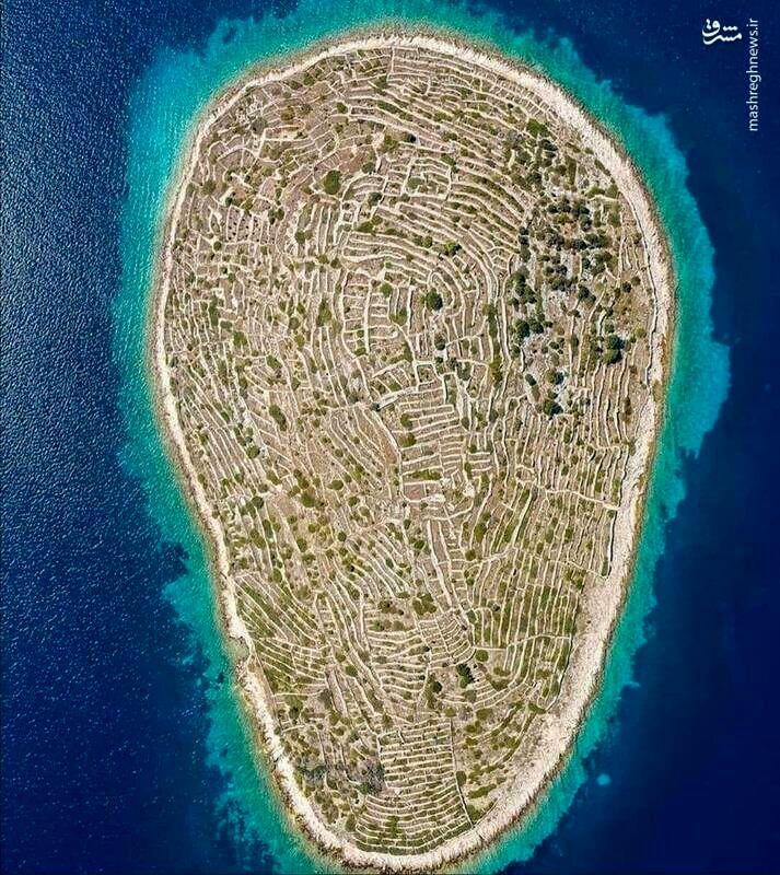 عکس: جزیرهای شبیه به اثر انگشت