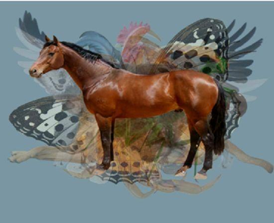 تستی جالب: اولین حیوانی که میبینید چیزهای زیادی درمورد شخصیتتان میگوید.