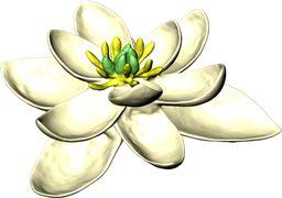 اولین گل جهان توسط دانشمندان بازسازی شد + عکس